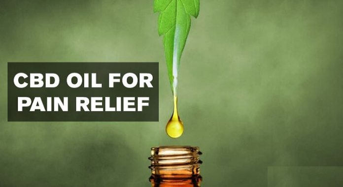 CBD-Oil-for-Pain-Relief